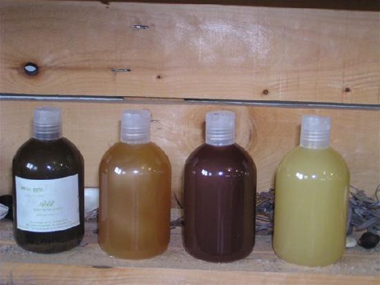 שמפו טבעי מצמחי מרפא